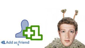 Mark Zuckerberg Rips Up Neighborhood For Privacy