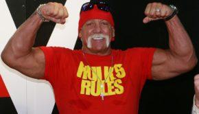 This Billionaire Financed Hulk Hogan's Sex Tape Lawsuit