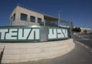 Teva Shares Rise as Company Plans to Cut Jobs