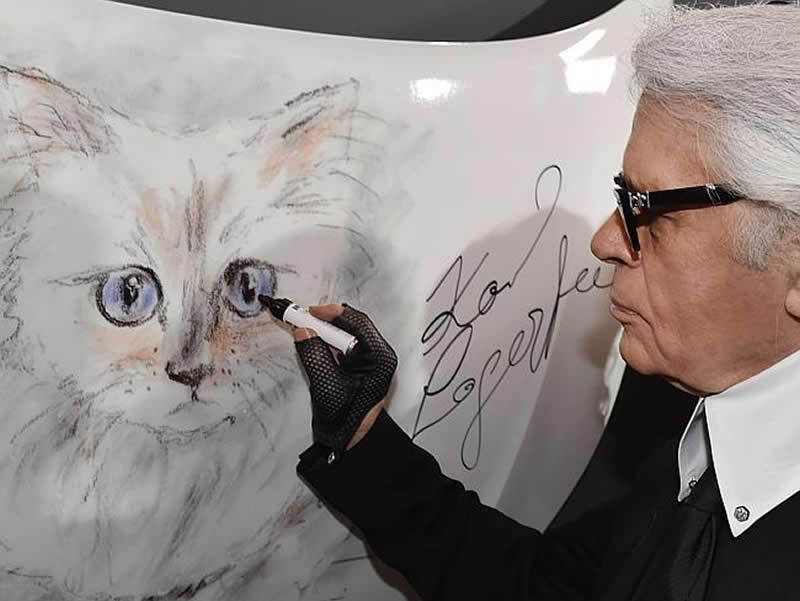 Did Karl Lagerfeld Leave All His Money To A Cat Wall Street Nation